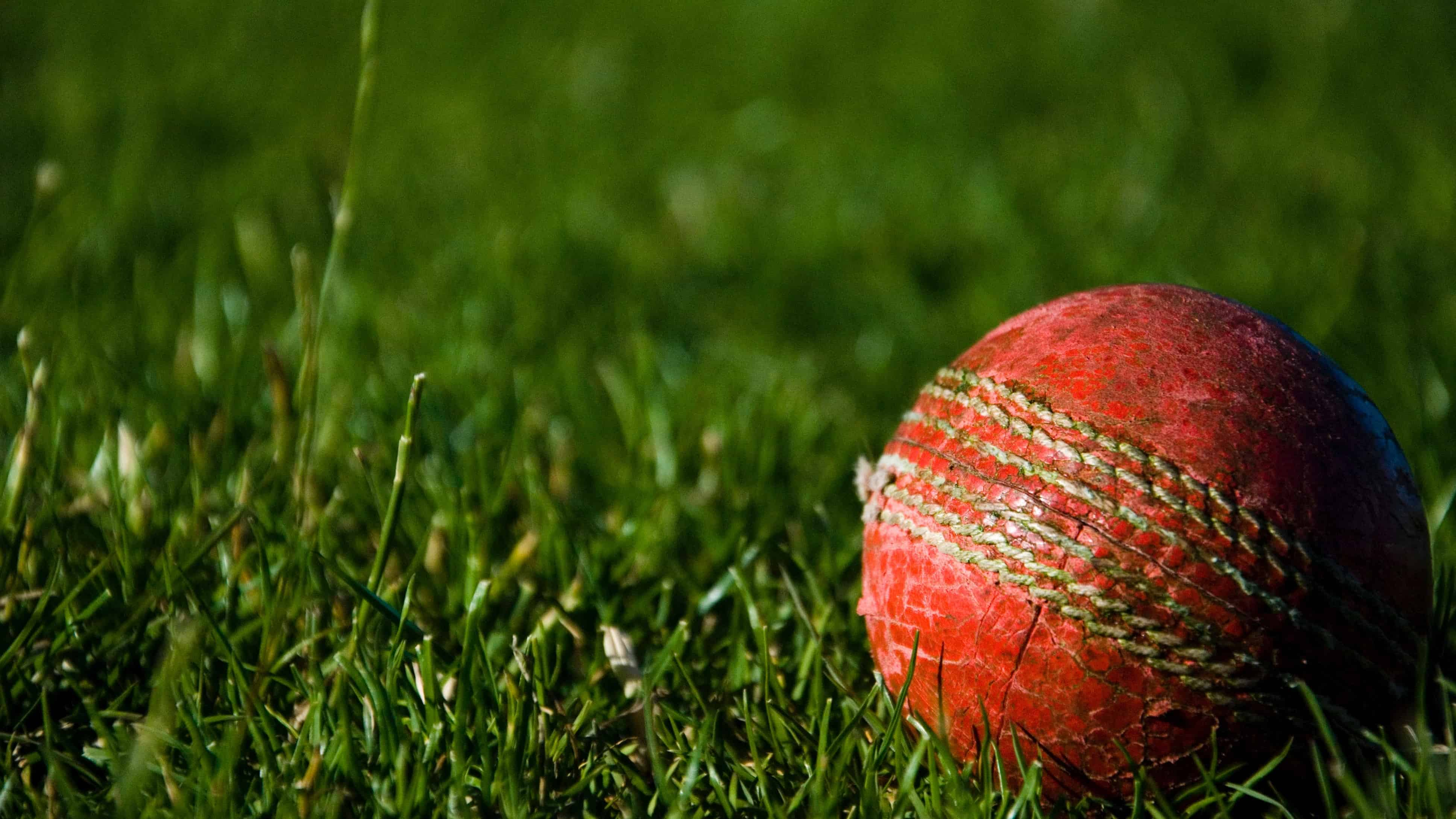 cricket-tour-to-indian-golden-triangle