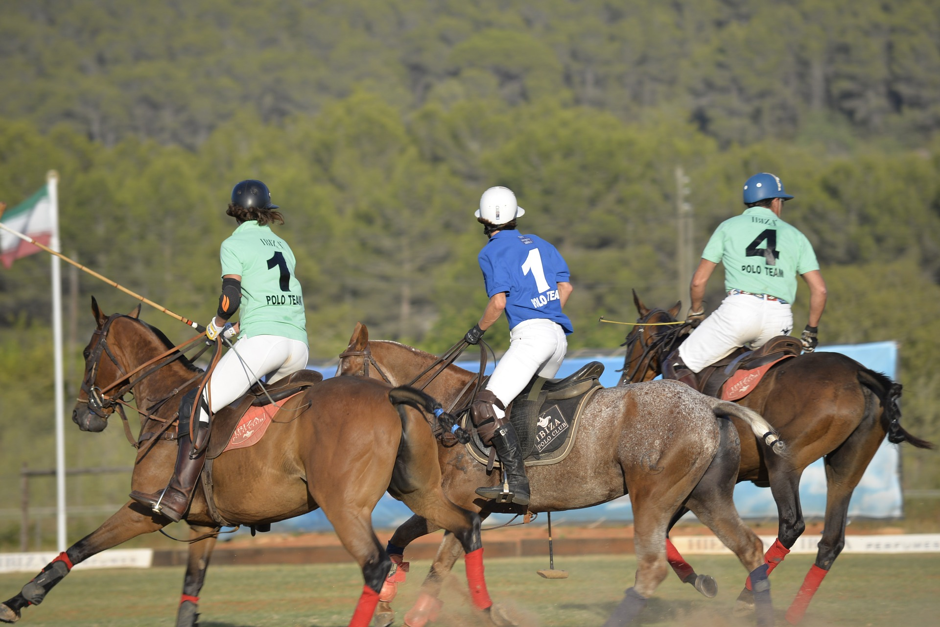 Horse Polo Travel India